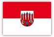 Flagge / Fahne  Stadt Zerbst cm