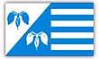 Flagge / Fahne Gemeinde Troendel