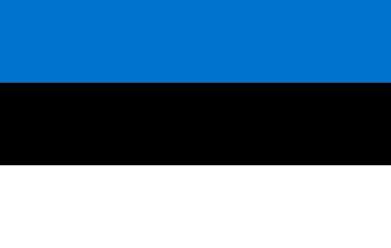 Flagge im Querformat Land Estland 150x100 cm