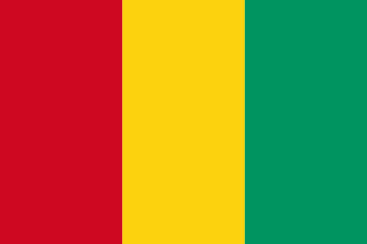 Flagge im Querformat Land Guinea 150x100 cm