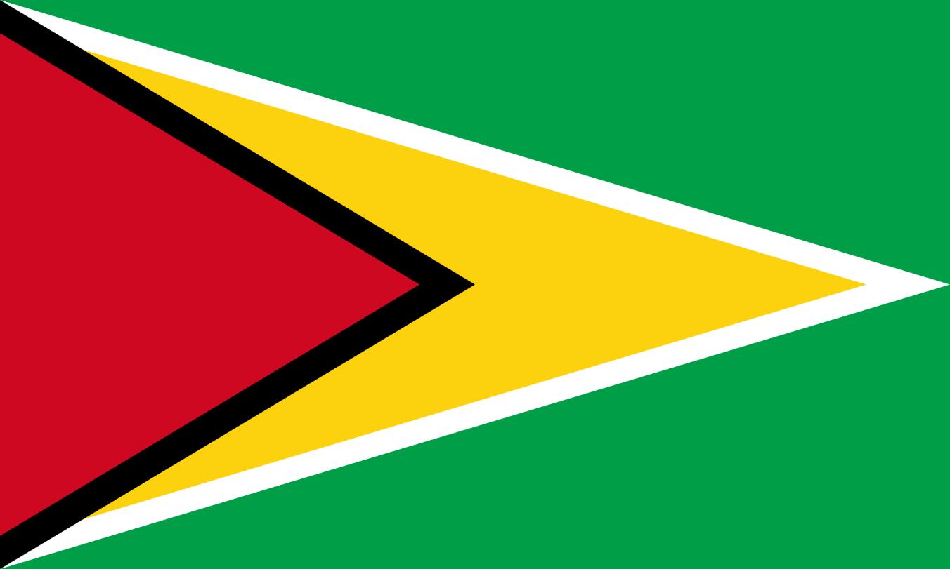 Flagge im Querformat Land Guyana 150x100 cm