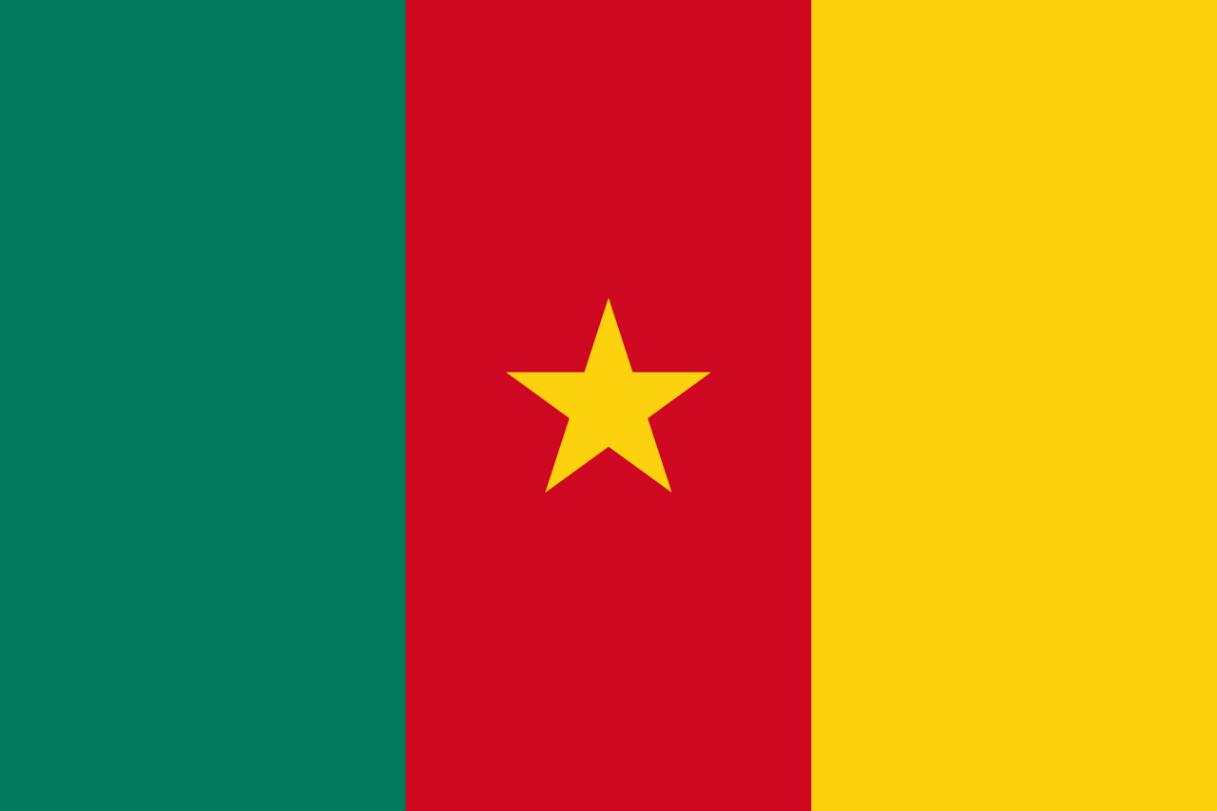 Flagge im Querformat Land Kamerun 150x100 cm