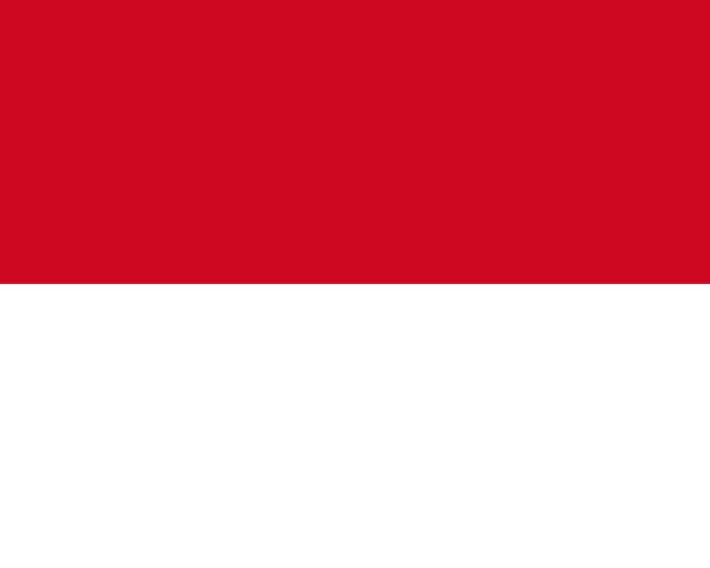 Flagge im Querformat Land Monaco 150x100 cm