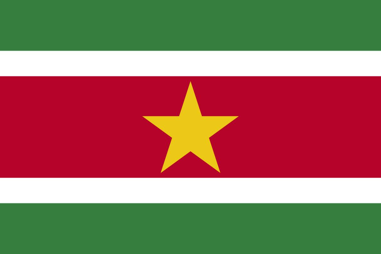 Flagge im Querformat Land Surinam 150x100 cm