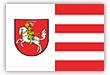 Flagge / Fahne  Stadt Dithmarschen